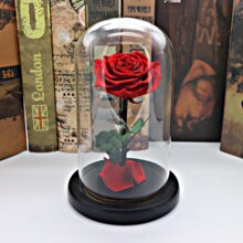 1Set-Beauty-and-the-Beast-Red-Rose-in-a-Glass-Dome-on-a-Wooden-Base-for.jpg_220x220q90